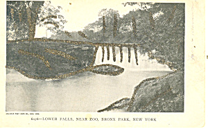 Lower Falls,Bronx Park, New York City  Postcard (Image1)