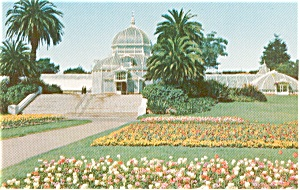 San Francisco Ca Golden Gate Park Postcard P1592