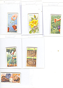 Will's Cigarette Cards Garden Hints Lot 6  p16005 (Image1)