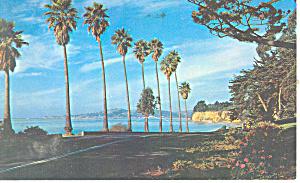 Channel Drive Santa Barbara CA Postcard p16035 1963 (Image1)