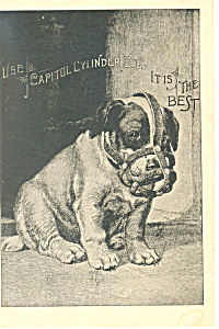 Capitol Cylinder Oil Trade  Card p16134 (Image1)
