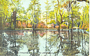 Magnolia on the Ashley, SC Postcard (Image1)