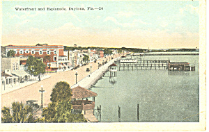 Waterfront and Esplanade Daytona FL  Postcard p16174 (Image1)