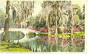 Natures Mirror Charleston SC  Postcard p16175 (Image1)