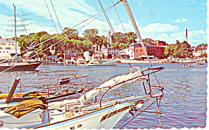 Harbor View, Camden, Maine  Postcard 1974 (Image1)