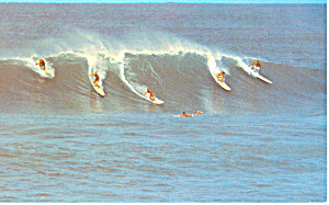 Surfing in Hawaii  Postcard p16269 (Image1)