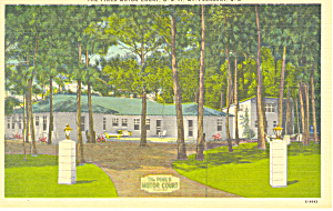 Pines Motel Mt Pleasant Sc Postcard P16361