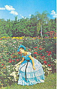 Cypress Gardens,FL, Flowers and Belle Postcard (Image1)