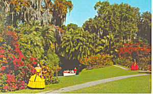 Cypress Gardens,FL, Colorful Gardens Postcard (Image1)