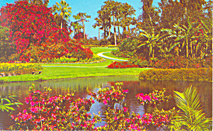 Cypress Gardens,FL, Colorful Fairyland Postcard (Image1)
