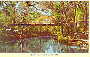 Hillsborough River State Park Florida Postcard p16435 (Image1)