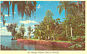 Cypress Gardens, FL Riot of Flowers Postcard (Image1)