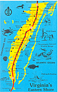 Map of Virginia's Eastern Shore Postcard (Image1)