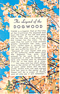 Legend Of The Dogwood Postcard p16746 (Image1)