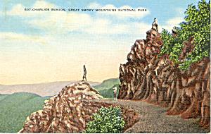 Charles Bunion Great Smoky Mountains National Park TN p16755 (Image1)