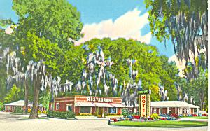Mossy Oaks Motel  Eulonia Georgia Postcard p16789 (Image1)