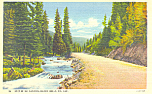 Spearfish Canyon, Black Hills, SD.Postcard (Image1)