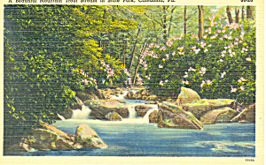 Trout Stream Caledonia Pa Postcard P16845