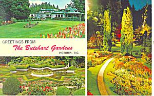 Butchart Gardens, BC , Canada Postcard 1972 (Image1)