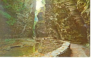 View in Gorge, Watkins Glen State Park, NY  Postcard (Image1)