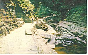 Stone Boulevard, Watkins Glen  NY  Postcard (Image1)