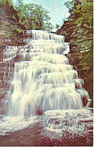 Hector Falls, Watkins Glen NY  Postcard (Image1)