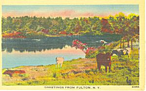Greetings From Fulton NY Postcard p17279 1945 (Image1)
