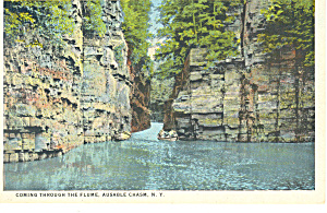 The Flume Ausable Chasm Ny Postcard P17328
