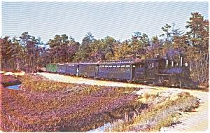 Cape Cod  MA Edaville RR Postcard p1735 (Image1)