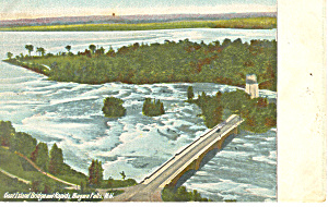 Goat Island and Rapids Niagara Falls NY  Postcard p17379 (Image1)
