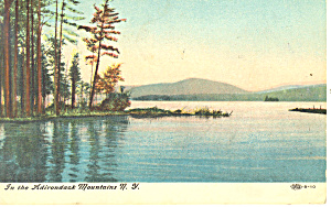 In the Adirondacks NY  Postcard p17430 1907 (Image1)