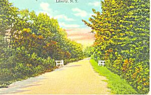 Liberty NY Postcard p17459 (Image1)