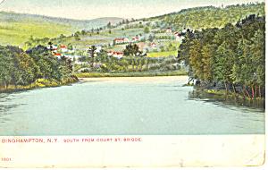 Looking South Binghamton NY   Postcard p17489 (Image1)