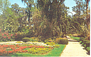 Triangle AreaOrton Plantation NC   Postcard p17511 (Image1)