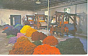 Hand Loom Biltmore House NC   Postcard p17529 1971 (Image1)