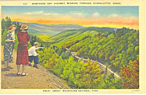 Newfound Gap Highway Oconaluftee Gorge NC Postcard p17646 (Image1)