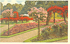 Walled Garden Biltmore House Asheville Nc Postcard P17648 1966