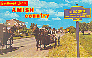 Amish Courting Buggy, Intercourse, PA Postcard (Image1)