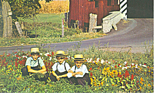 Young Amish Children PA Dutch Country Postcard p17702 (Image1)