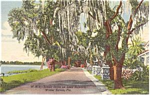 Lake Howard Winter Haven Florida  Postcard p1770 (Image1)