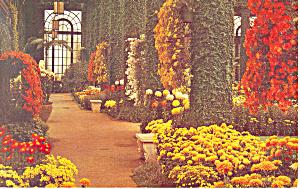 Longwood Gardens Kennett Square PA Postcard p17721 (Image1)