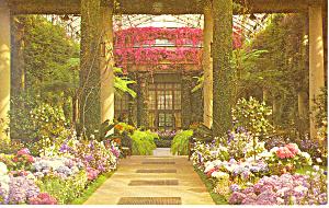 Longwood Gardens Kennett Square PA Postcard p17722 (Image1)