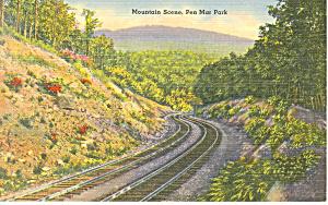 Mountain Scene Penn Mar Park PA Postcard p17783 (Image1)