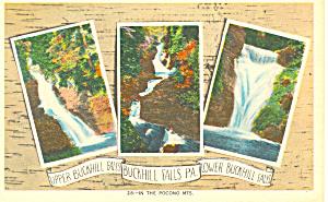 Buck Hill Falls PA Postcard p17784 (Image1)