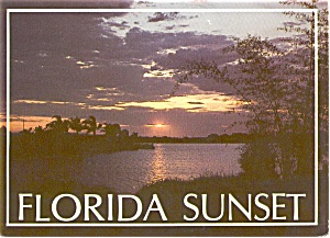 Florida Sunset Postcard P1784