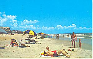 Sun Bathing Myrtle Beach SC  Postcard p17880 1966 (Image1)