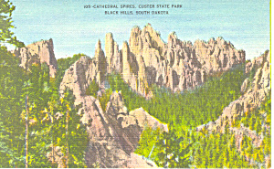 Cathedral Spires,custer State Park , Sd Postcard