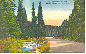 Spearfish Canyon Black Hills  SD  Postcard p17918 (Image1)