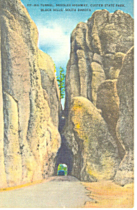 Tunnel Needles Highway Custer State Park Sd Postcard P17925