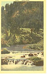 Sand Creek Black Hills  SD  Postcard p17926 (Image1)